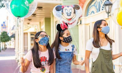 Disneyland mask update